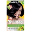 Garnier NUTRISSE Farba  10  40ml